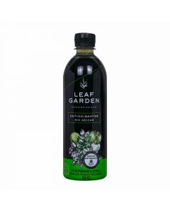 Leaf garden infusion natural hierbabuena limon